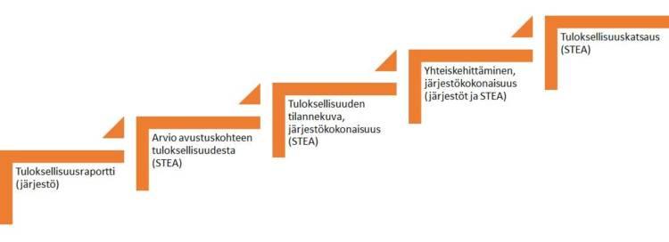 Tuloksellisuusarvioinnin eteneminen vuonna 2021: järjestö toimittaa STEAlle tuloksellisuusraportin. STEA tekee arvion avustuskohteen tuloksellisuudesta ja koostaa järjestökokonaisuutta käsittelevän tuloksellisuuden tilannekuvan. Järjestöt ja STEA käsittelevät tilannekuvaa yhteiskehittämistilaisuudessa, jonka jälkeen STEA työstää järjestökokonaisuuden tuloksellisuuskatsauksen.